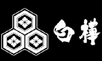 野沢温泉 やすらぎの宿 白樺